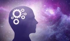 интеллект человека