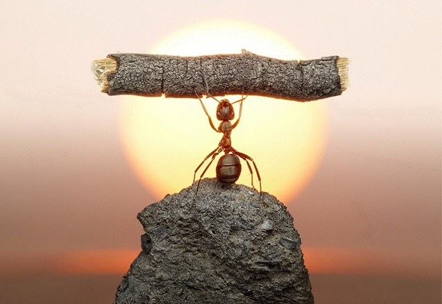 Как научиться преодолевать трудности